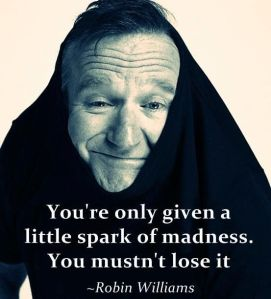 robin williams silly pic
