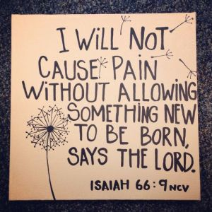 i will not cause pain without something better to be born