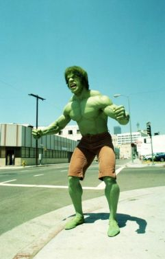 lou forigno hulk is my only hulk